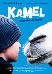 Kamel - Norsk plakat