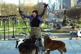Toni Collette lufter hunder i I dine sko (2005)