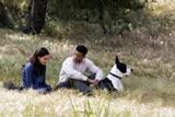 Rosario Dawson spiller rollen som Emily Posa mot Will Smith i rollen som Ben Thomas i Seven Pounds