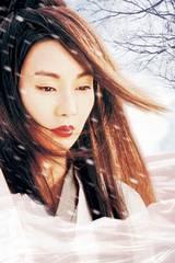 Maggie Cheung i Hero