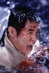 Jet Li i Dødlig våpen 4