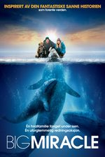 Big Miracle no.pl