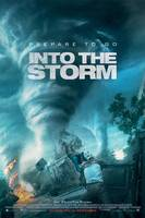 Into the Storm - norsk plakat