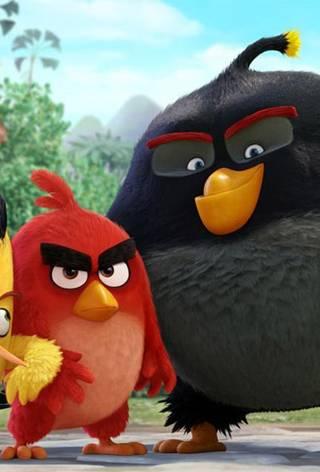 Første bilde fra Angry Birds - the Movie