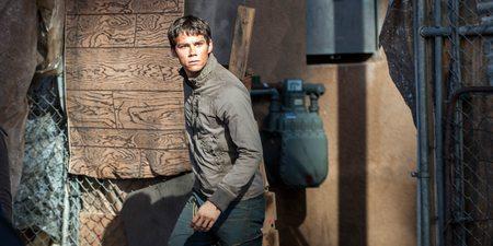 Dylan O'Brien i The Maze Runner: Ildprøven