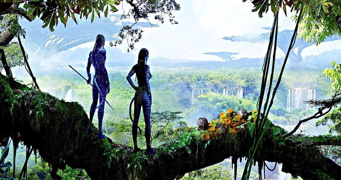 Avatar fortsetter