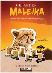 Geparden Maleika