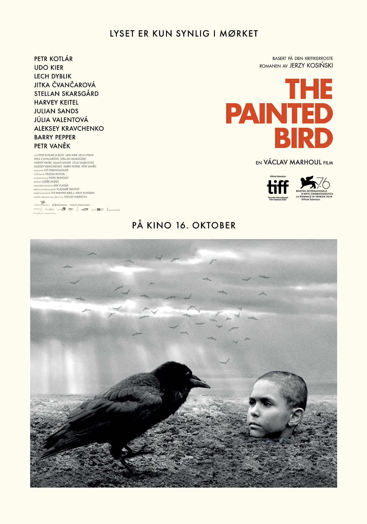 THE PAINTED BIRD NO POSTER A4.jpg