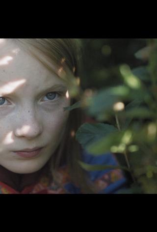 Sami short film programme – AMIFF 2020