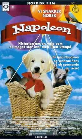 napoleon 1995 filmweb
